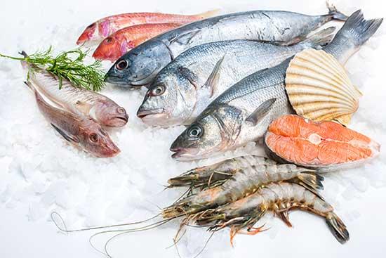 Fish-Box-Selection.jpg
